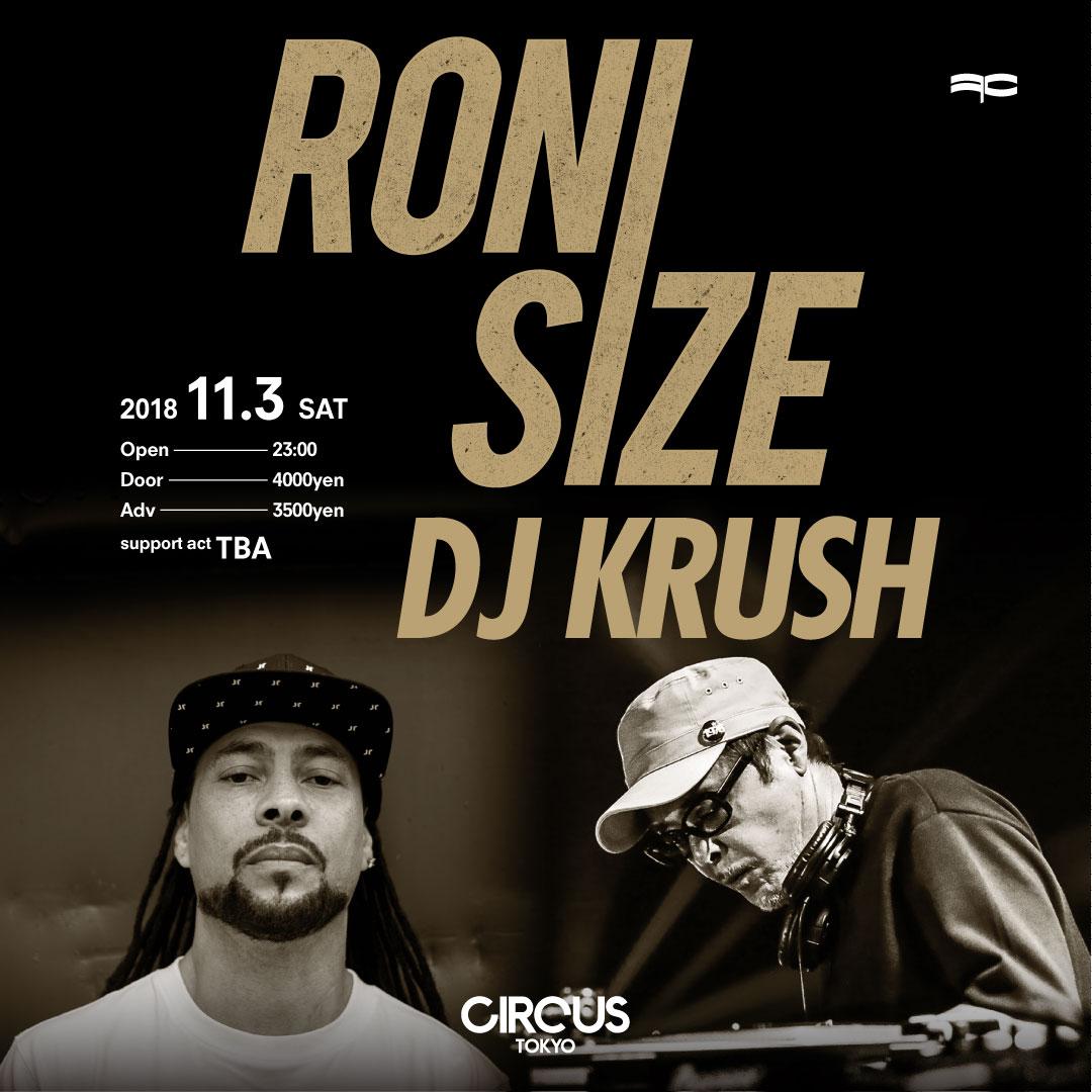 RONI SIZE DJ KRUSH