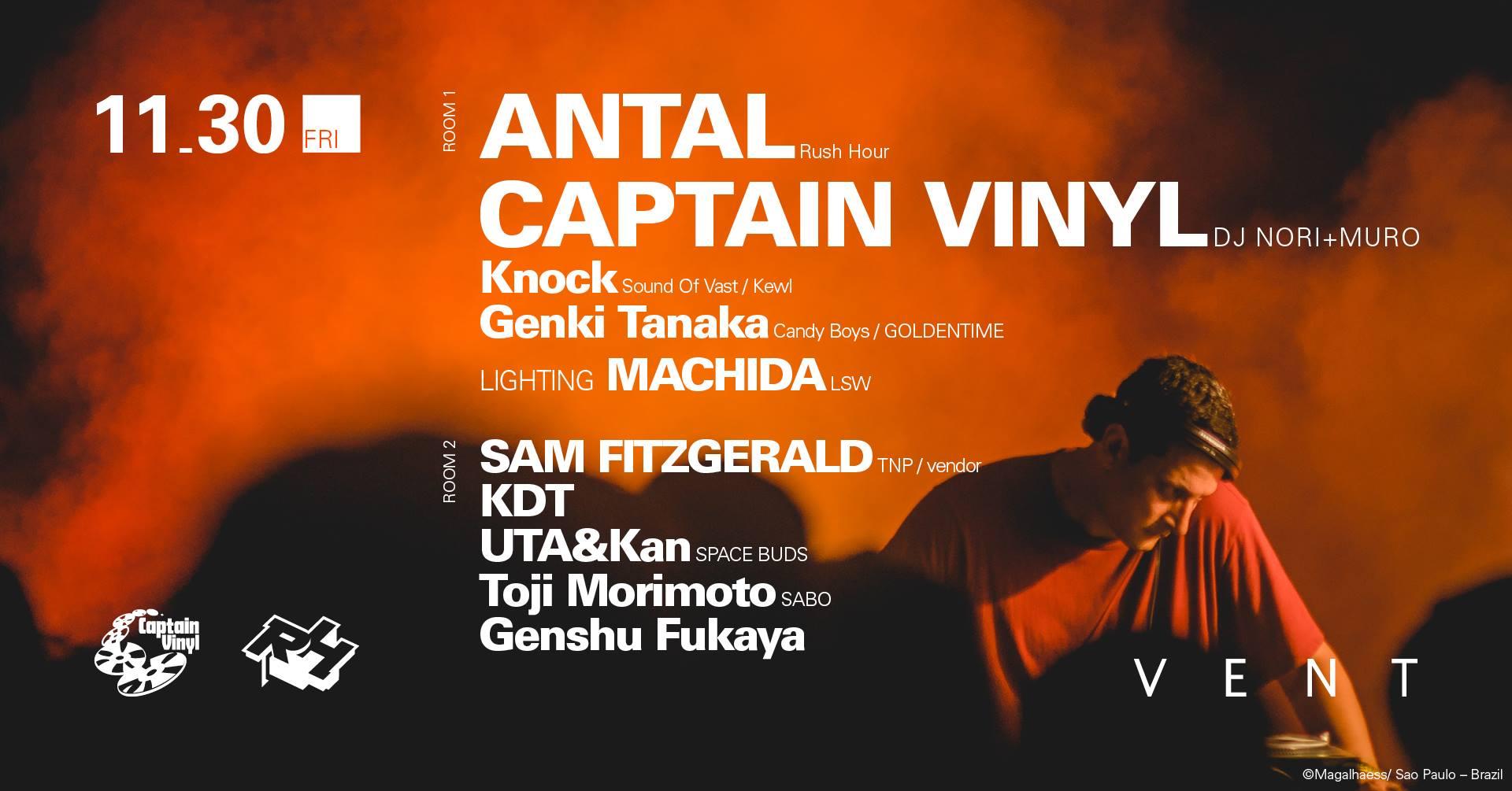 antal captain vinyl