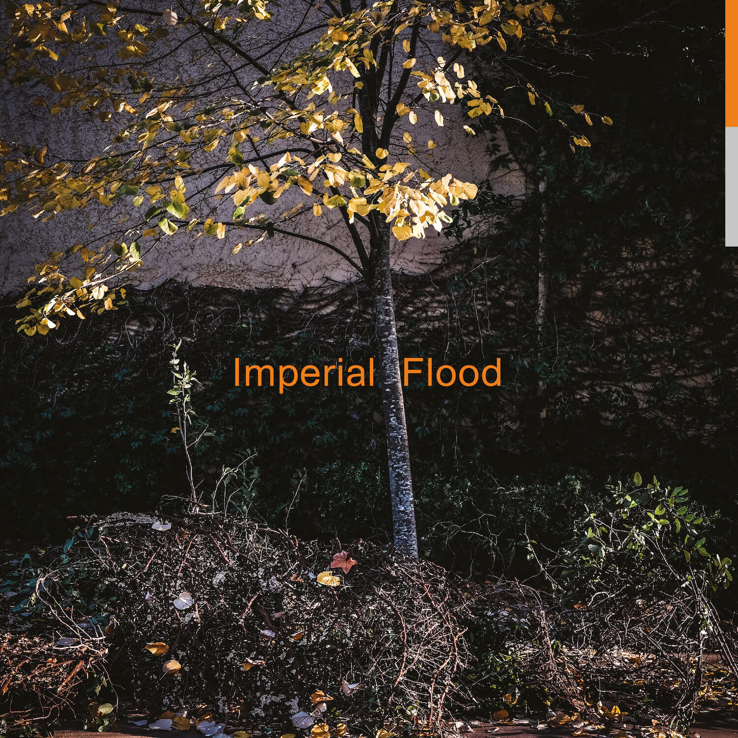 Logos - Imperial Flood