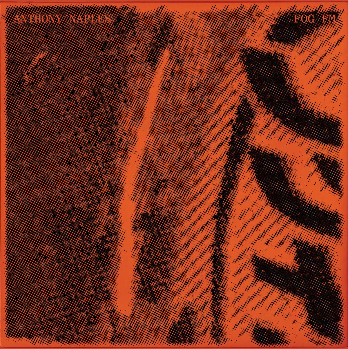 Anthony Naples - FogFM