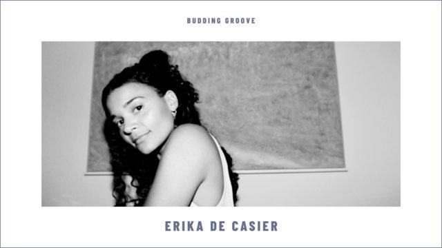Erika de Casier