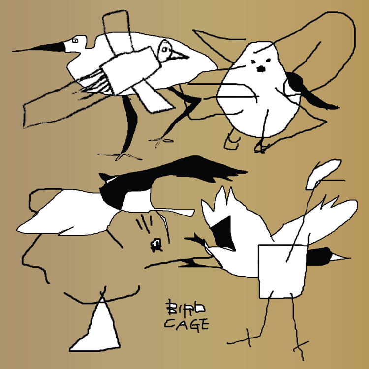 Bird Cage: Birdfriend Archives
